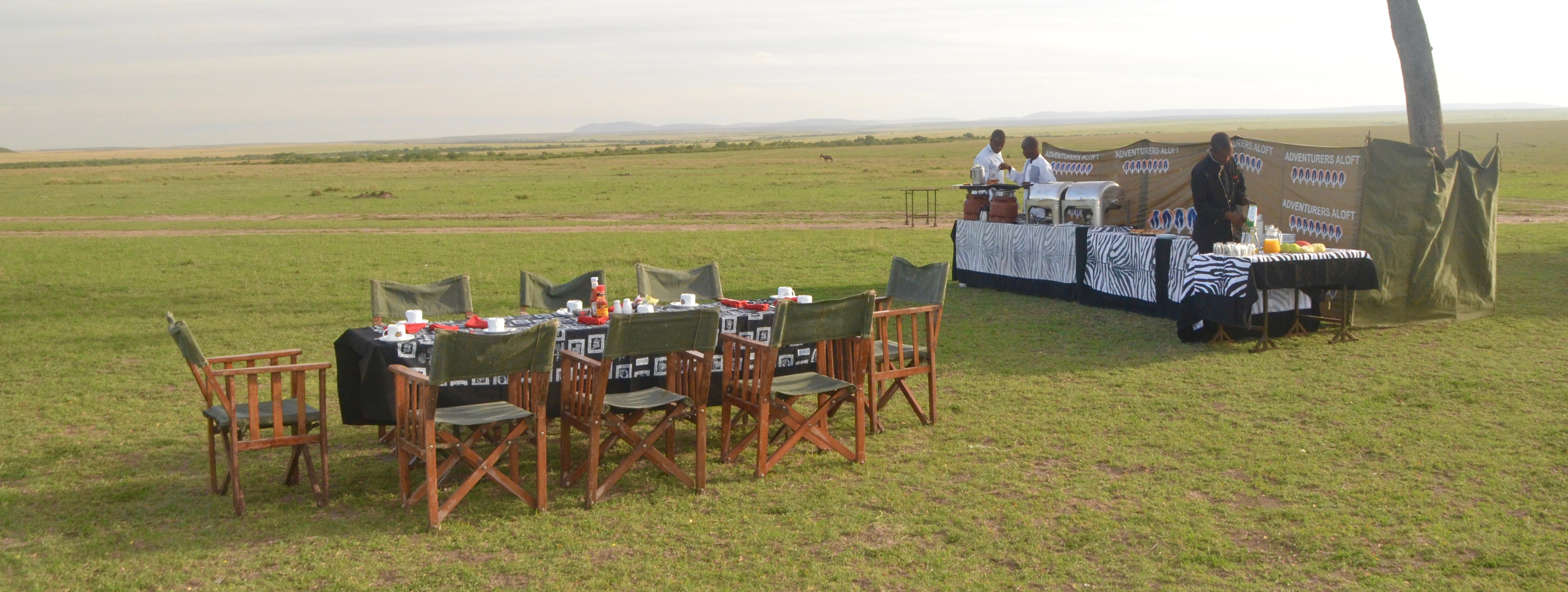 Breakfast on the Savannah, Masai Mara