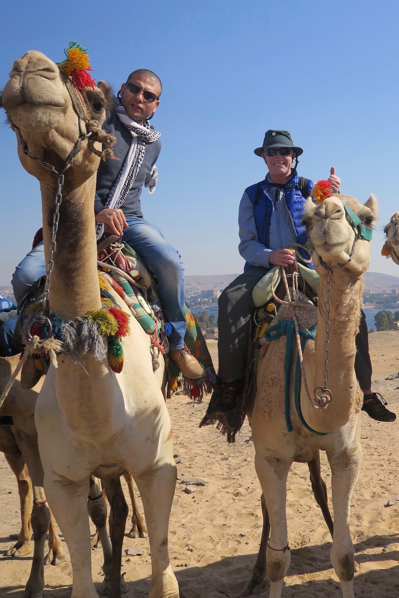 On a Camel with Ahmed on the way to St. Simeon Monastery