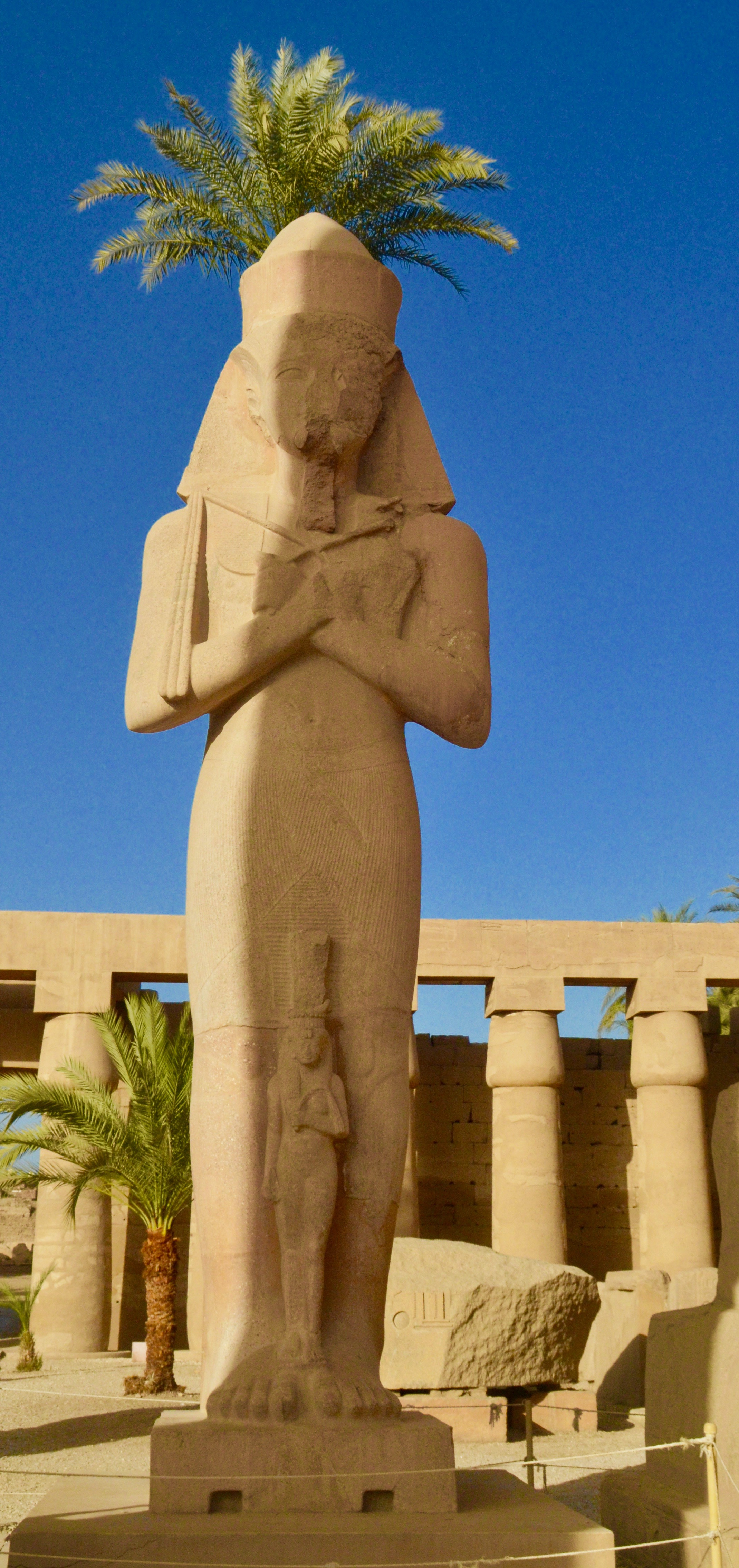 Ramses with a Palm Tree