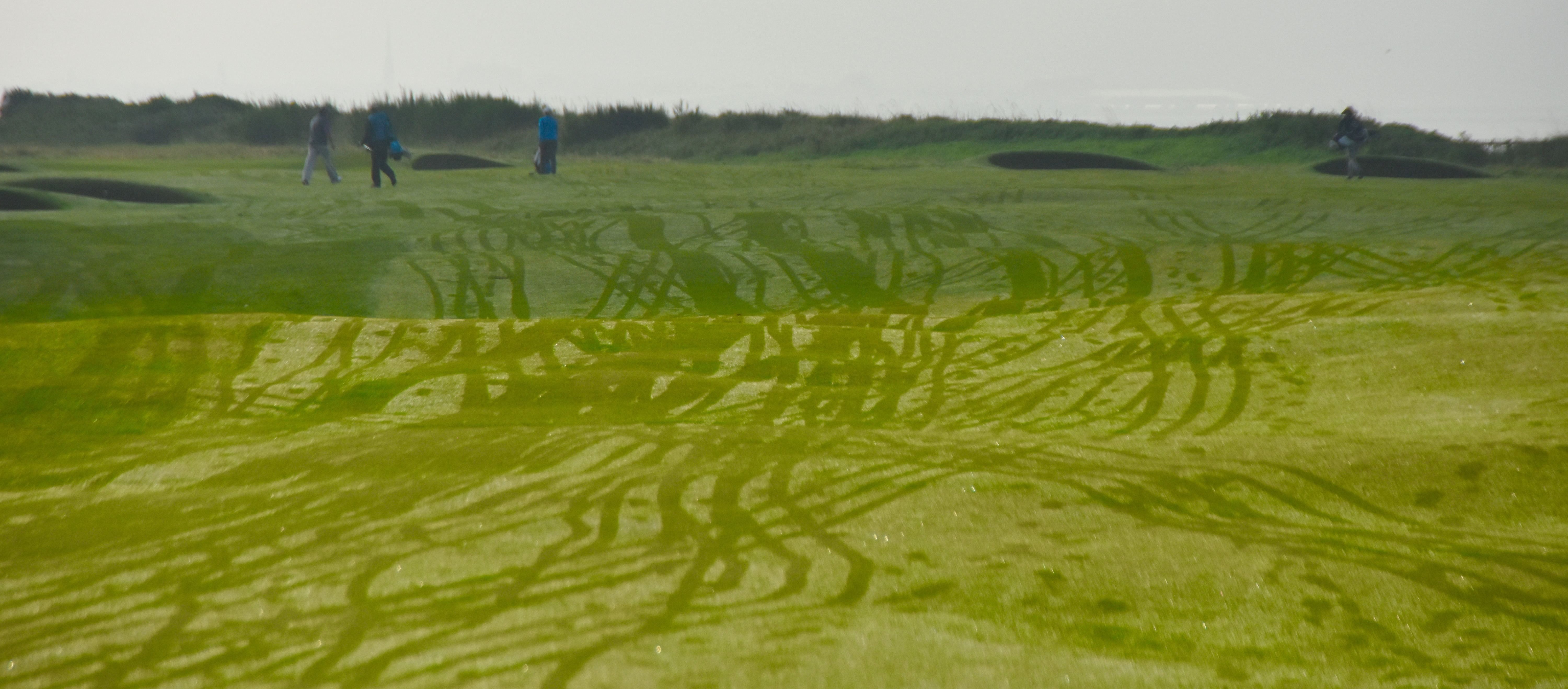 No. 1 - Seal, Old course, Troon
