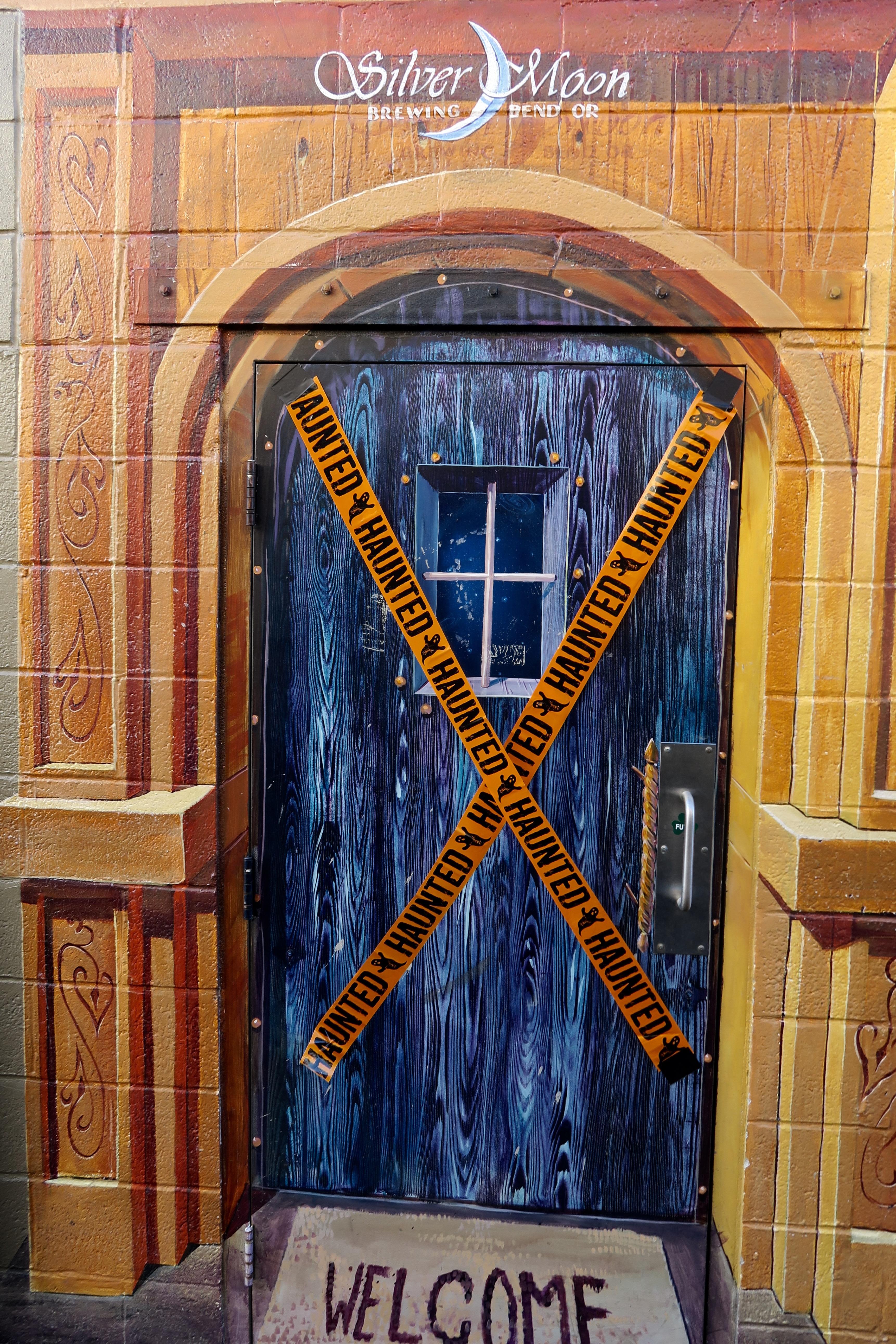 Silver Moon Door