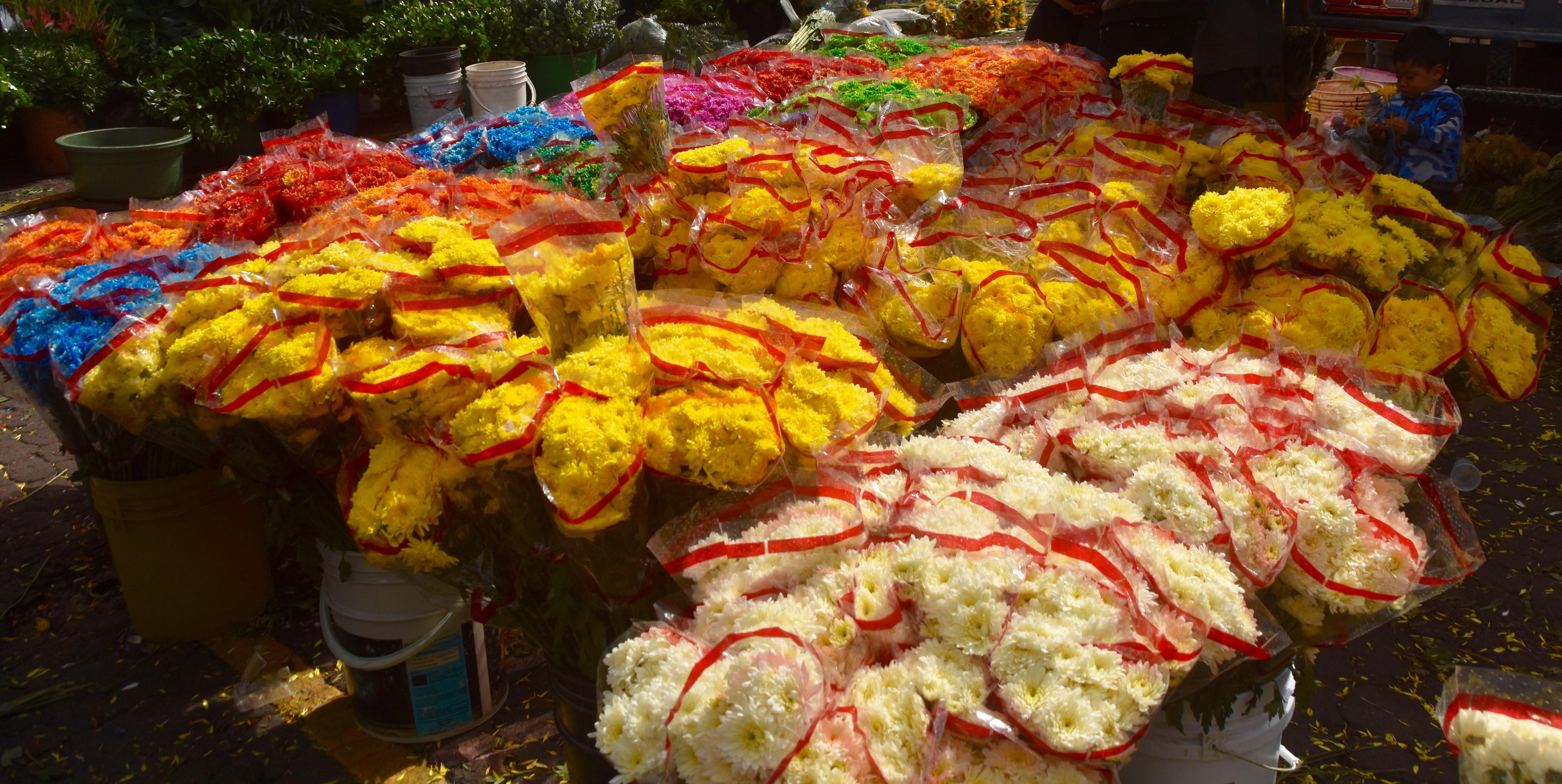 Bogota Flower Market