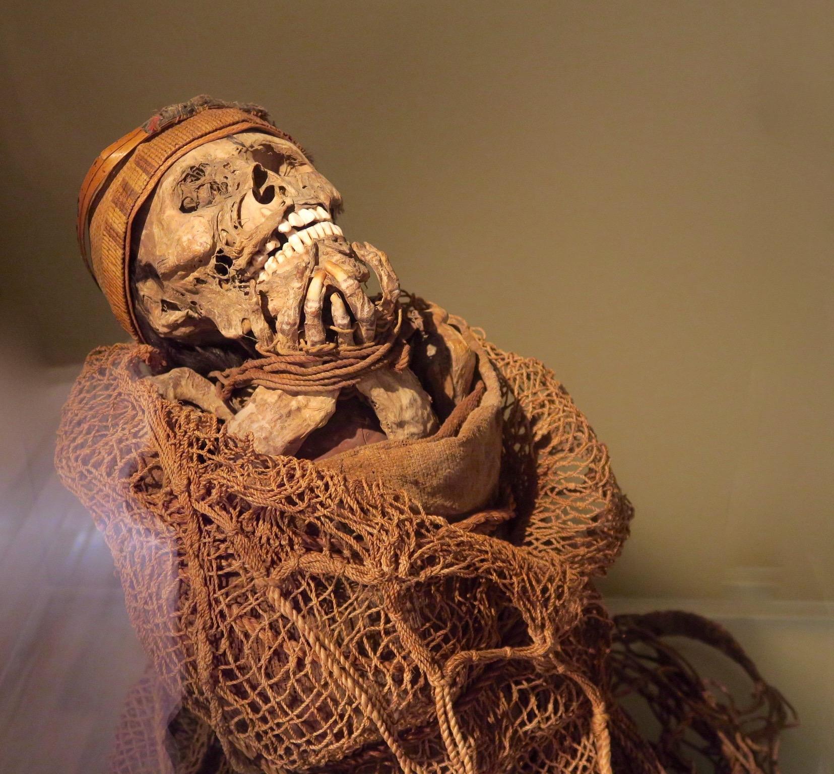 Muisca Mummy, Gold Museum