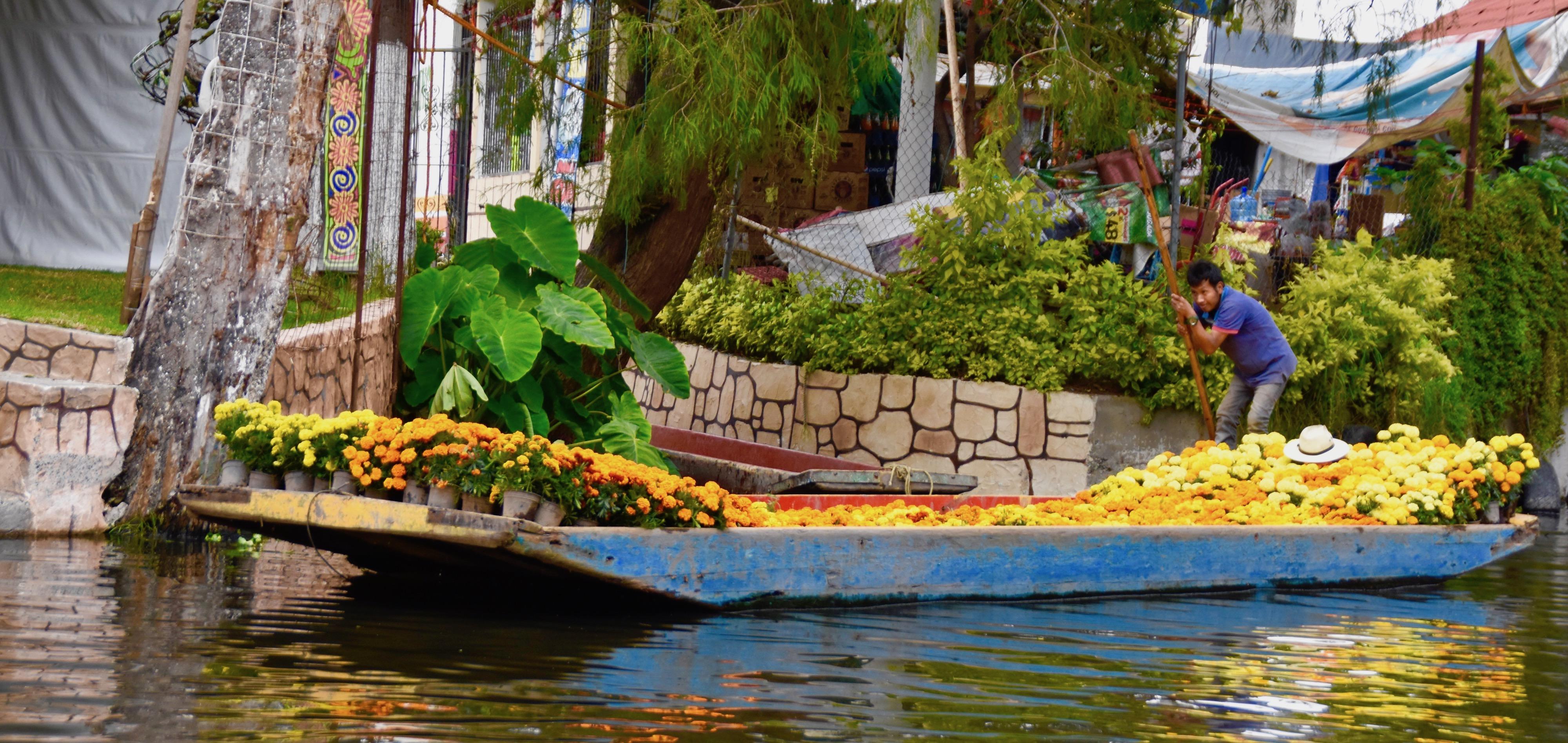 Flower Barge, Xochimilco