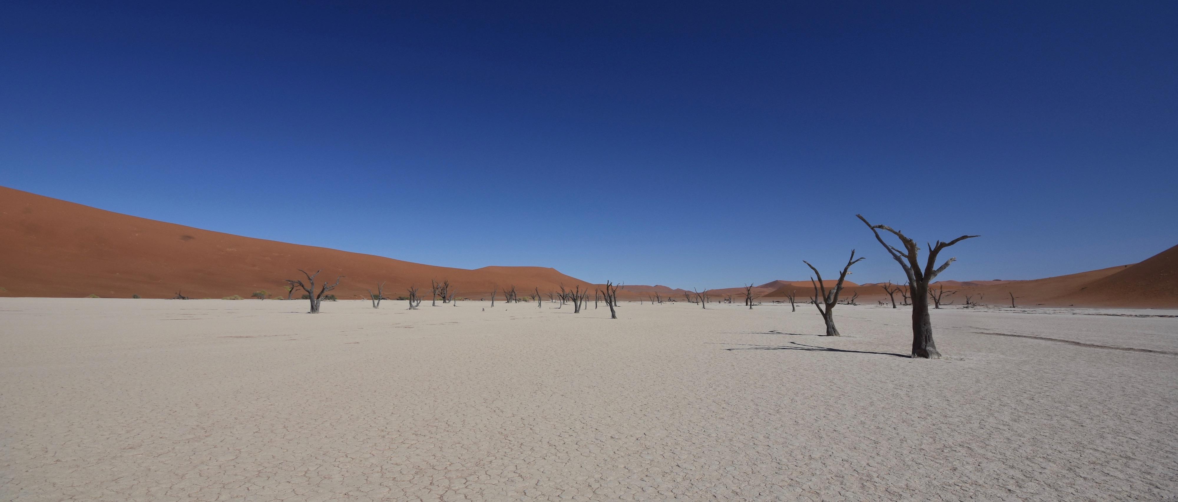 Exlporing Namibia - Deadvlei