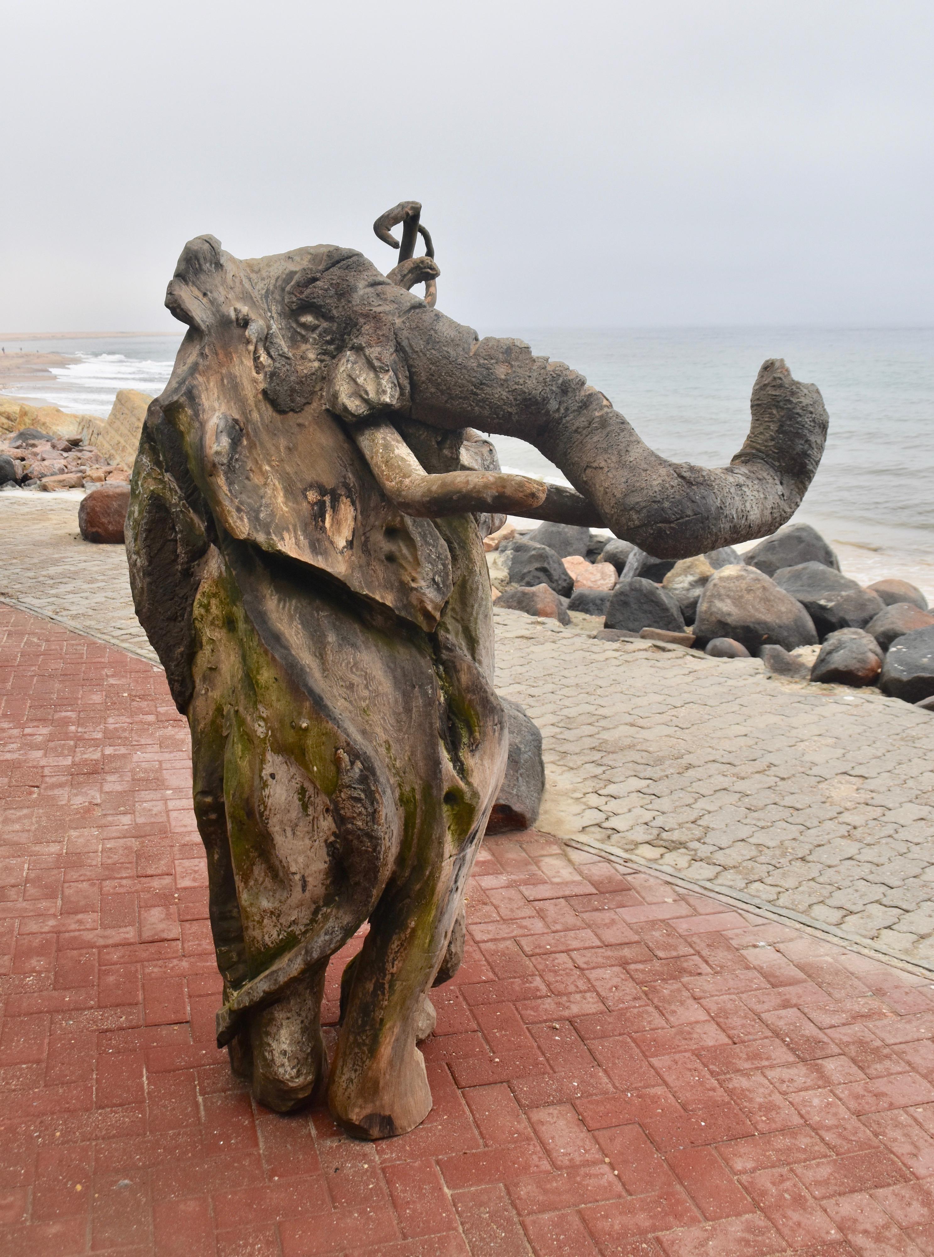 Driftwood Elephant, Swakopmund
