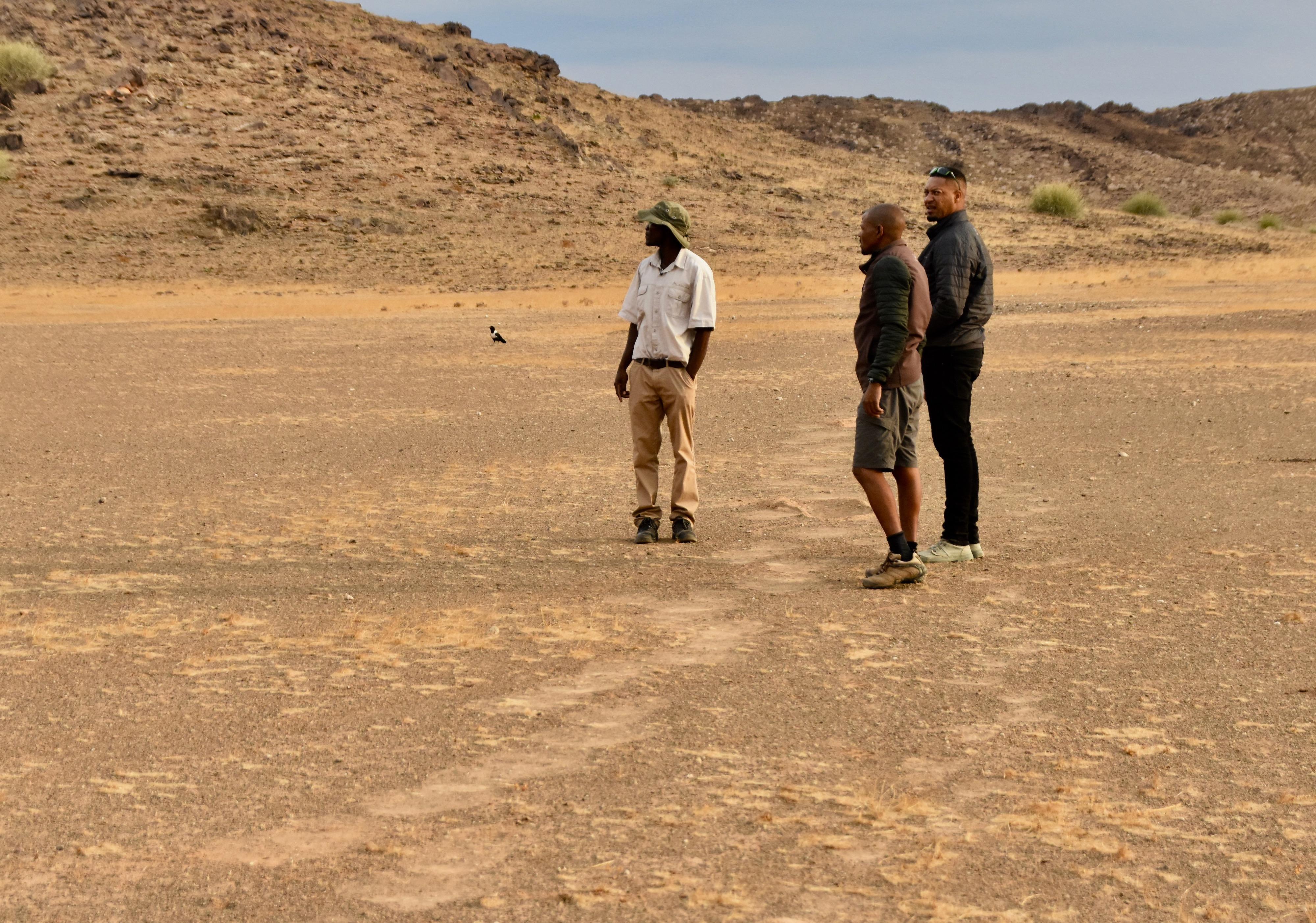 Tracking Elephants in Damaraland