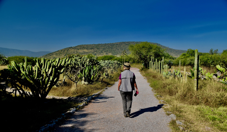 Path to Tula