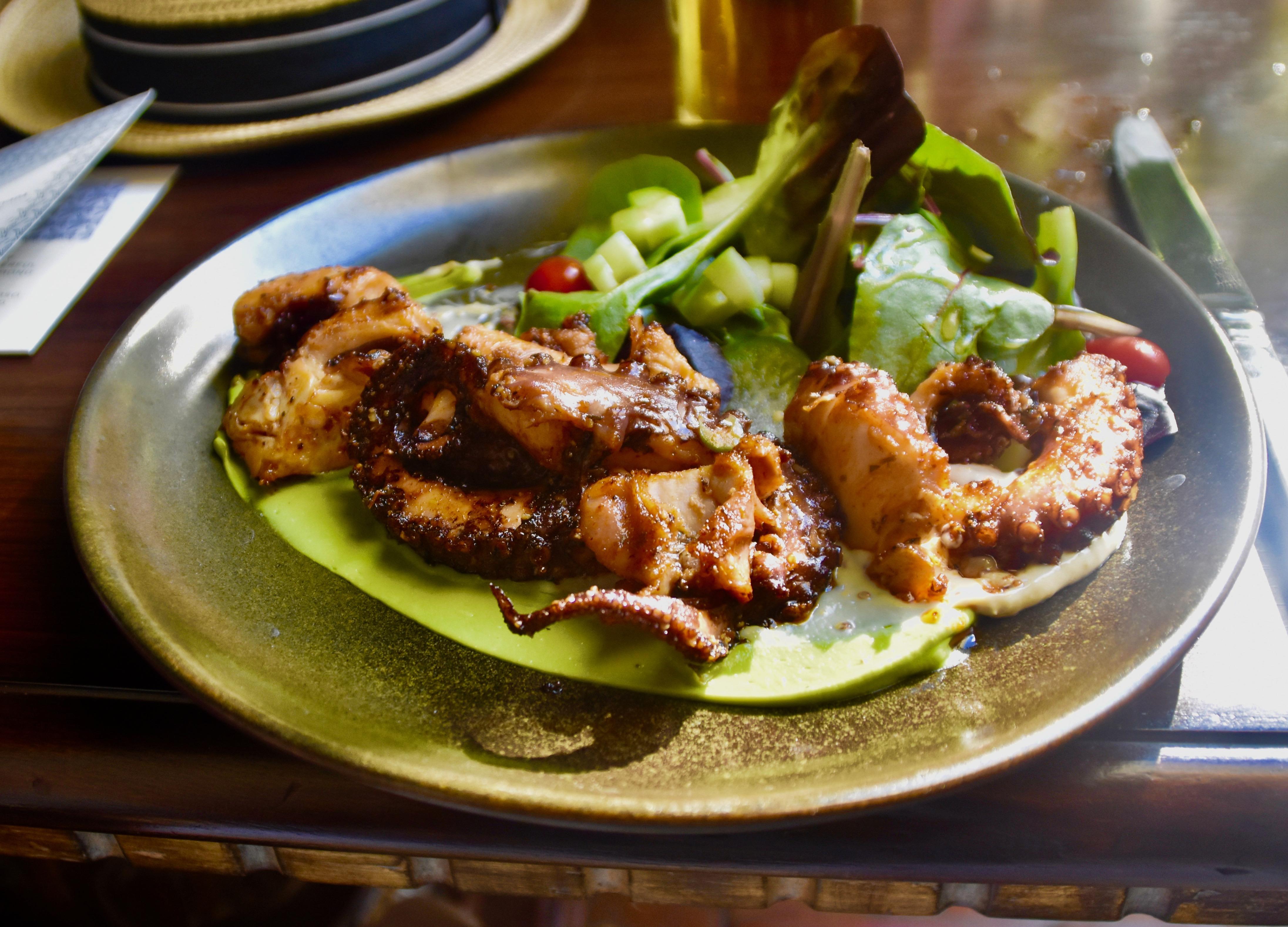 San Miguel de Allende Octopus Salad
