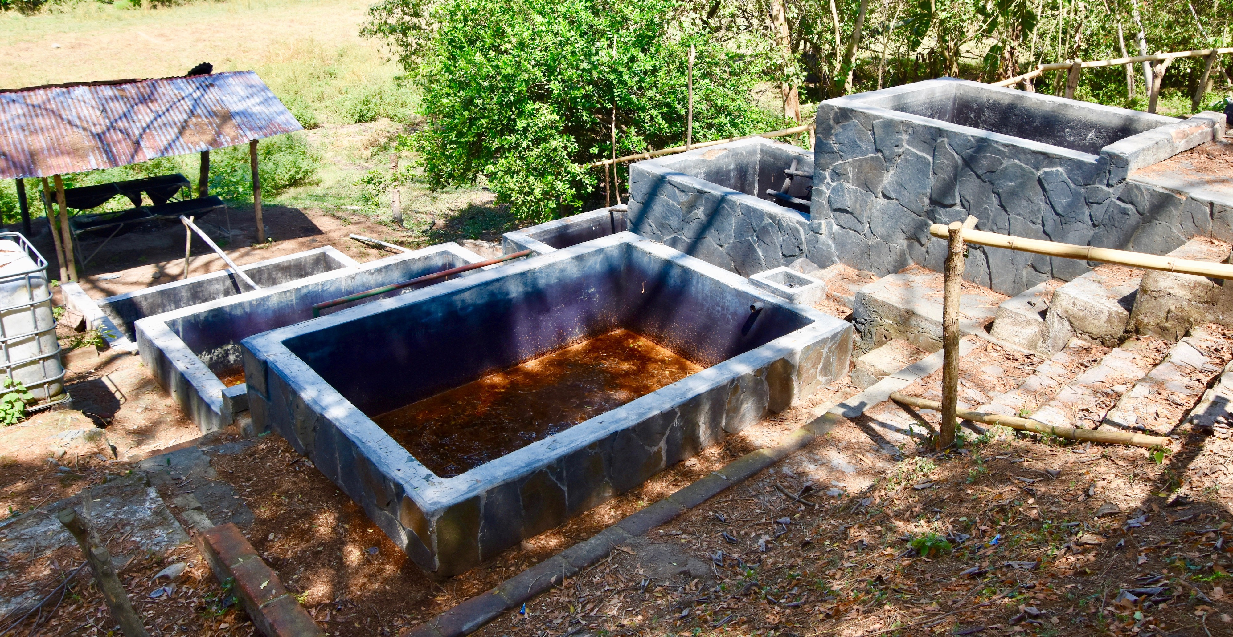 Indigo Obraje, Hacienda Los Nacimientos Indigo Farm