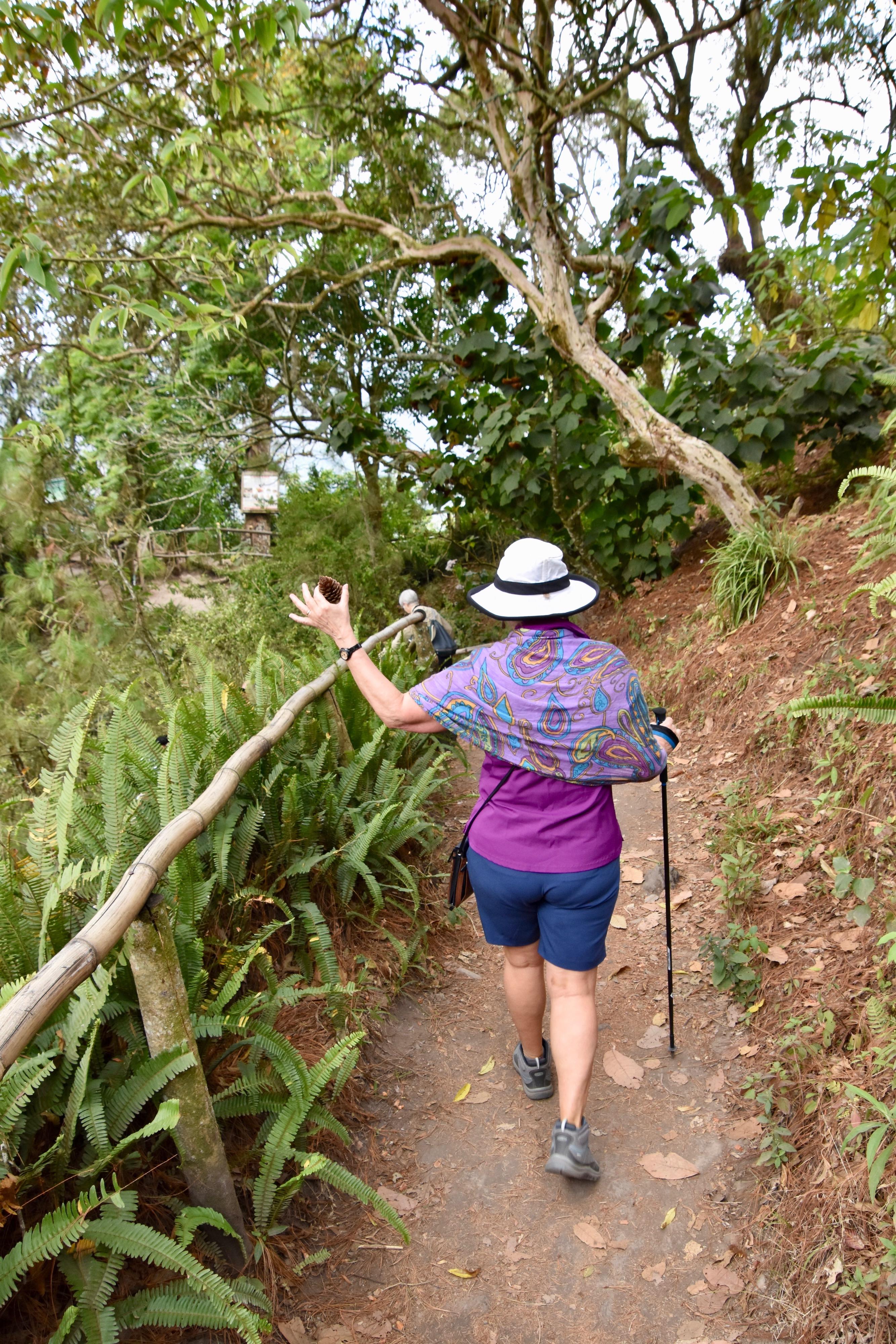 El Boqueron Trail