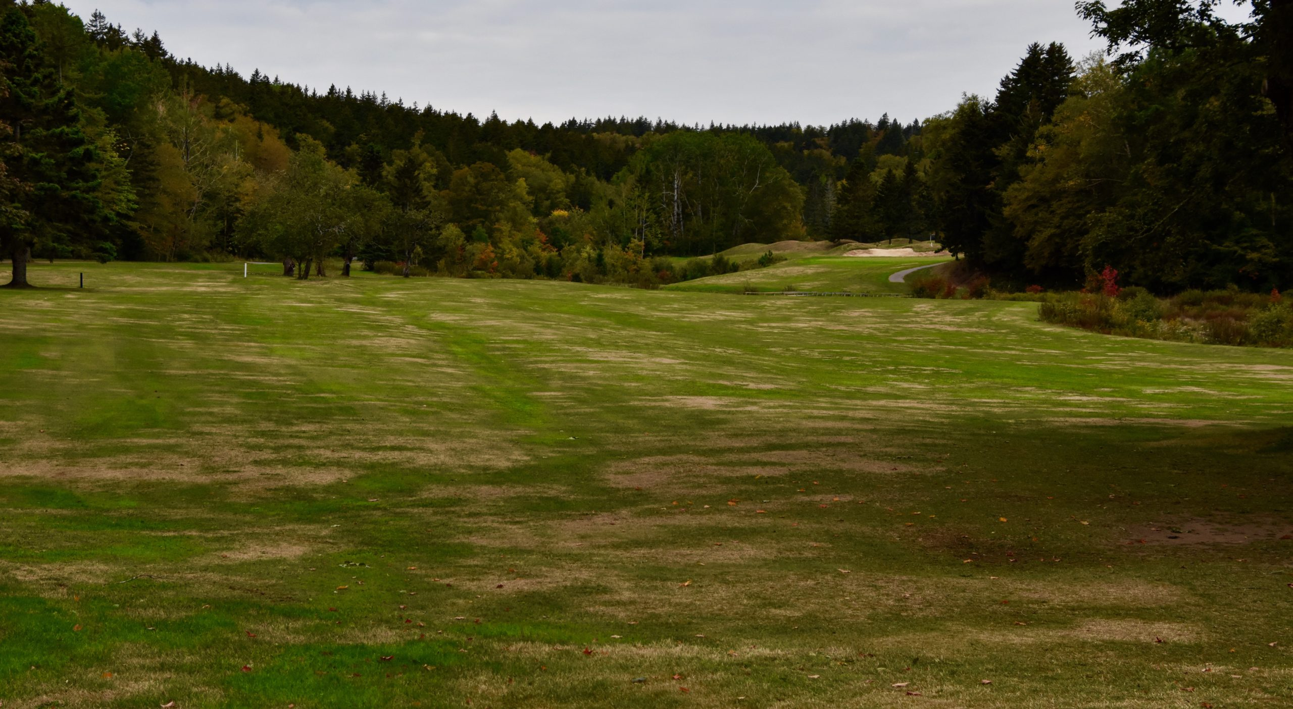 #2 Women's Tee, Fundy Golf Course