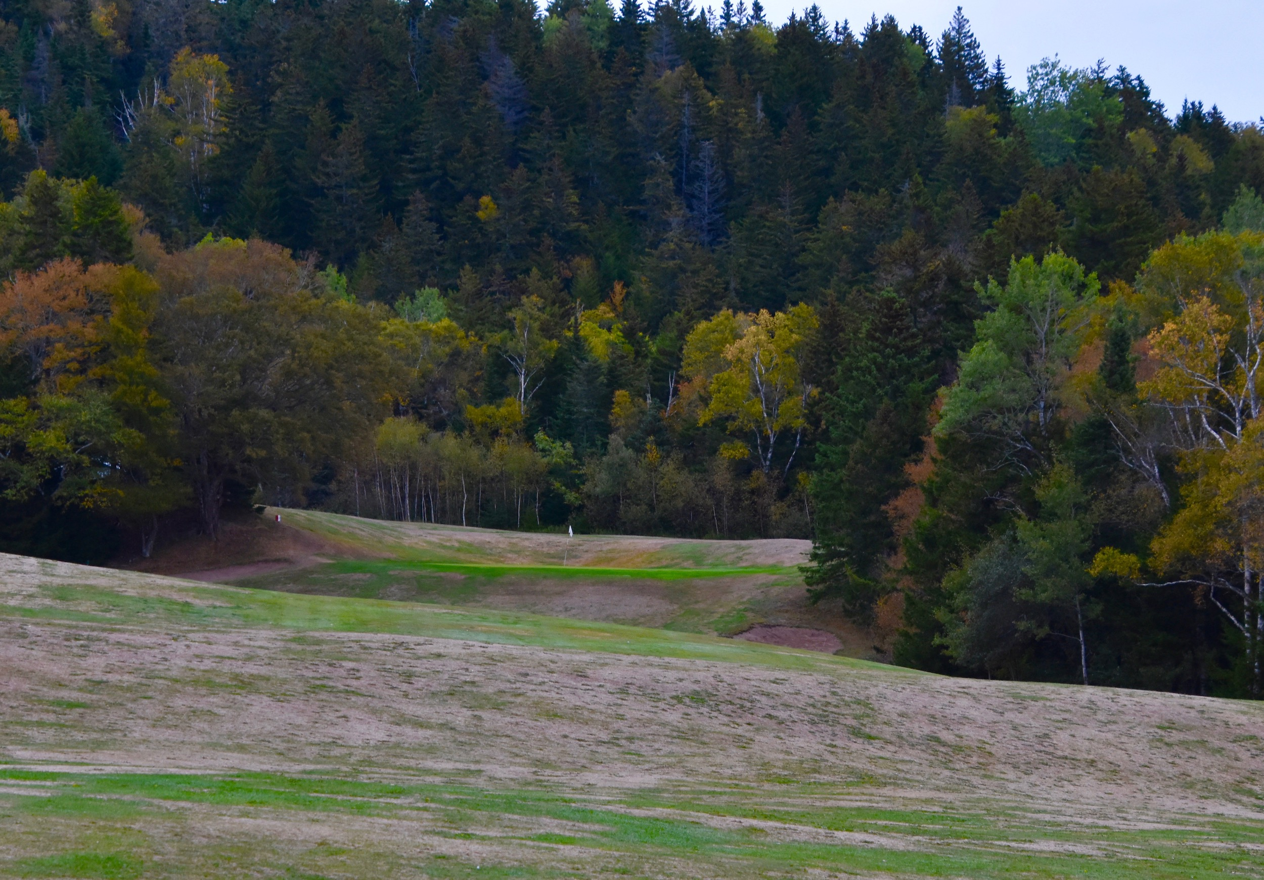 Fundy Golf Course #4