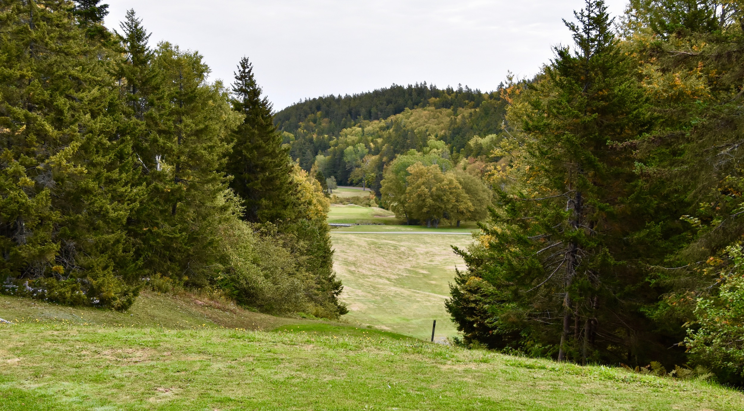 Fundy Golf Course #7