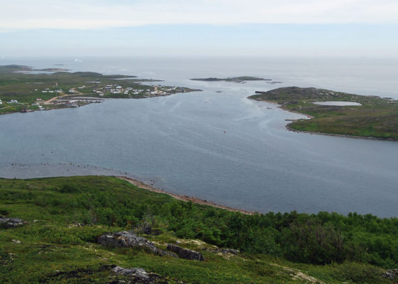 Photo of Red Bay from Tracey Hill